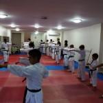Training mit Karateclub Manavgat (7)